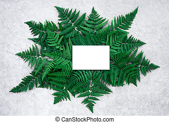 Blank card and dark green fern leaves on concrete surface