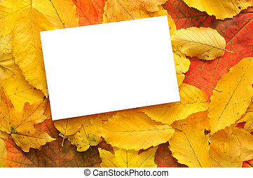 Blank card with fall leaves