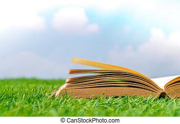 Blank catalog, magazines, book mock up on green grass