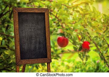 Blank chalkboard in apple orchard