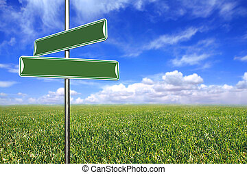 Blank Directional Signs in an Open Field of Grass and Sky