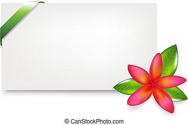 Blank Gift Tag With Green Satin Ribbon And Fragipani, ...