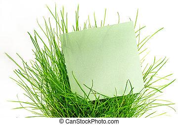 Blank green sticker in green grass