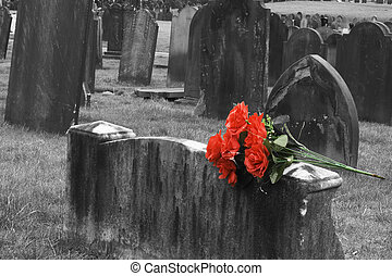 Blank headstone in graveyard with bunch of red roses
