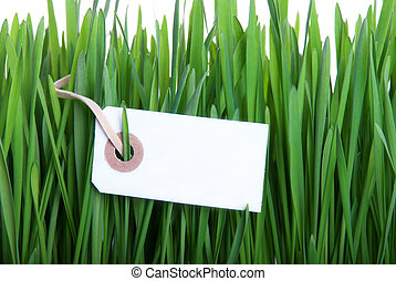 Blank Label in Grass
