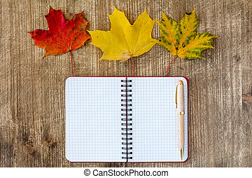Blank notebook decorated with autumn leaves