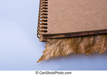 Blank notebook with fallen autumn leaves