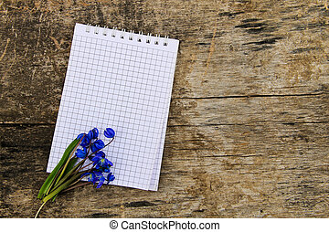 Blank notepad with blue scilla flowers on wooden background