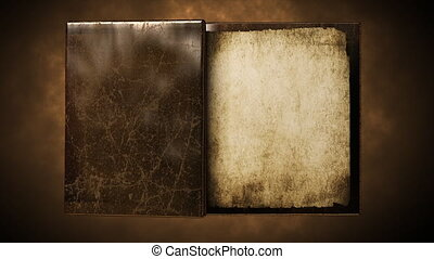 Blank old  book