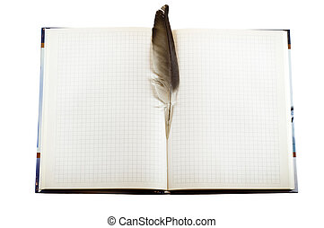 Blank page of note book