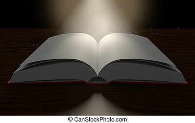 Blank Paged Book Open Spotlight