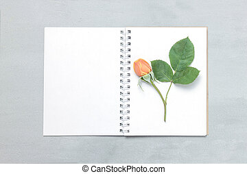 Blank paper and cute pink flowers