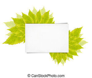 Blank paper and leaves