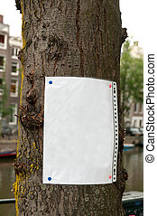 Blank paper leaf nailed to the tree - add your announcement