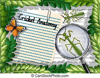 Blank paper top view with leaves and butterfly and mantis elements illustration