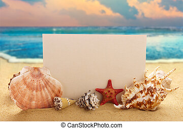 Blank paper with seashells and starfish on the sandy beach