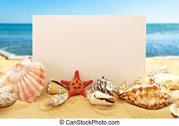 Blank paper with seashells on beach