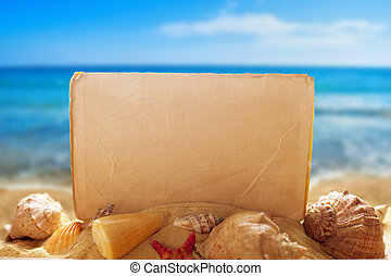 Blank paper with seashells on the beach