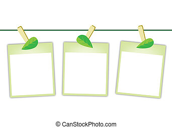 Blank Photos with Green Leaves Hanging on Clothesline