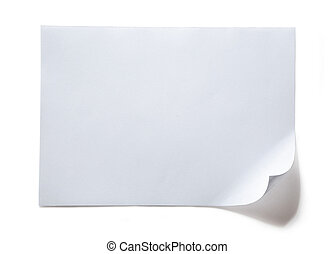 Blank sheet of paper as white background