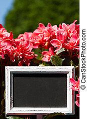 Blank sign in a flower pott