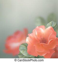 blank, vektor, rosen, blumen