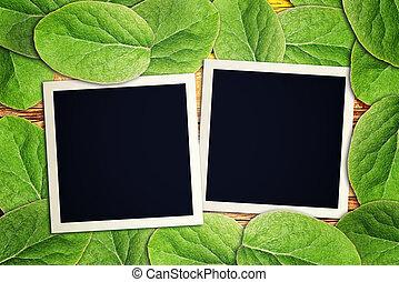 Blank vintage instant photo frames