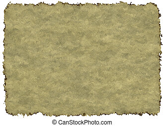 Blank Vintage Paper Texture with Clipping Path