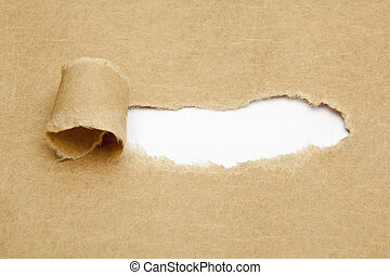 Blank White Space in Torn Paper - Blank white space in torn ...