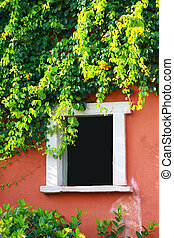 blank window with tree on wall