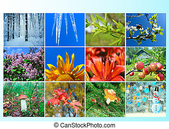 blank with twelve colored images of nature for calendar