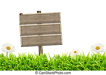 Blank wooden sign and green grass with daisies