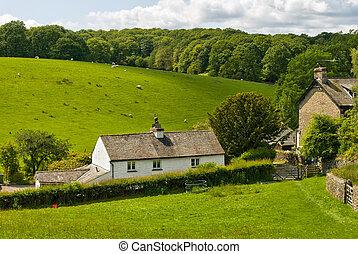 blanqueó, cabaña, en, rural, setting.