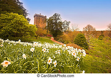 Blarney - Blarney Castle and garden Co.Cork, Ireland