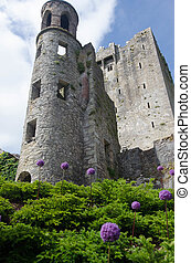 Blarney Castlle - View of Blarney Castle
