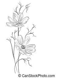 blatouch, květ