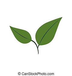 blatt, grünpflanze, natur, jahreszeit, icon., vektorgrafik