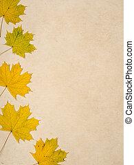 blatt, hintergrund, Herbst