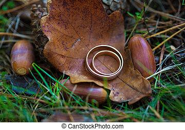 blatt, ringe, lie, park, gold, wedding