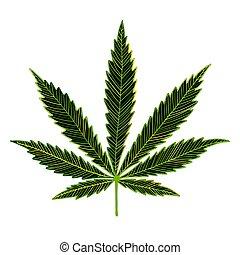blatt, skizze, design, dein, cannabis