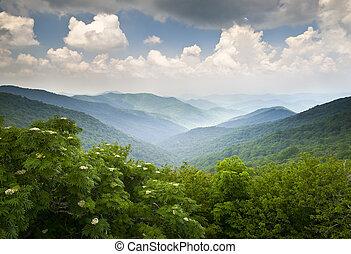 blaue berge, übersehen, bergrücken, sommer, landschaftlich, nc, asheville, landschaftsbild, felsig, allee, gärten, wnc