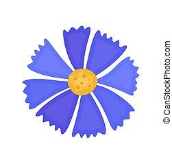 blaue blume, vektor
