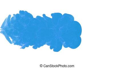 blaue tinte, tropfen, in, wasser, auf, a, weißes,...
