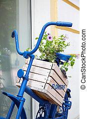 blauer kasten, altes , sommer, fahrrad, blumen