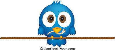 blauer vogel, wurm
