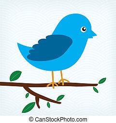 blaues, baum, vogel, zweig, sitzen