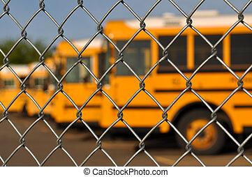 blaues, bus, schule, mehrfach, himmelsgewölbe
