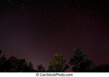 blaues, dunkel, nacht himmel, mit, viele, sternen