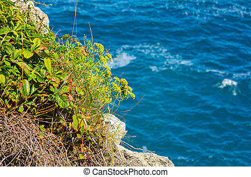 blaues, entlang, cantabrian, meer, steinen