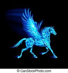 blaues, feuer, pegasus.